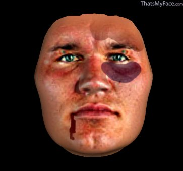 Thumbnail of Randy Orton as 3D Face
